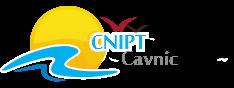 CNIPT Cavnic
